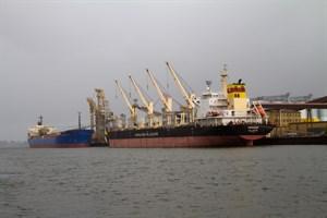 Weizen- und Splittumschlag im Rostocker Hafen