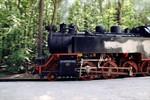 Die Mecklenburgische Bäderbahn Molli