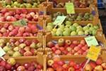 8. Rostocker Apfel- und Räuchermarkt