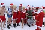 Weihnachtsschwimmen der Rostocker Seehunde