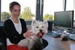 """Bundesweiter Aktionstag """"Kollege Hund"""""""