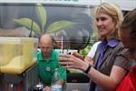 Manuela Schwesig mixt alkoholfreie Drinks in Warnemünde