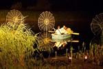 4. Lichtklangnacht 2010 im IGA-Park Rostock
