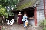 Spaziergang über die Ostsee: Tagestour nach Dänemark