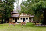 Historische Huftieranlage im Rostocker Zoo neu gestaltet