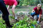 Kreuzfahrer helfen im Rostocker Zoo