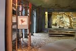 """""""Glanzlichter 2010"""" - Fotoausstellung im Rostocker Zoo"""