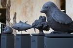 Ausstellung zur Biodiversität im Zoo Rostock