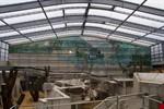 Der Rostocker Zoo begibt sich 2012 auf Darwins Spuren