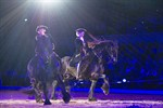 Internationale Pferdeshow Royal Horse Gala in Rostock