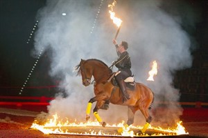 The Royal Horse Gala 2012 in Rostock