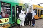 Darwineum: Werbung nimmt mit neuer Straßenbahn Fahrt auf