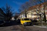Zukunft der Straßenbäume im Hansaviertel
