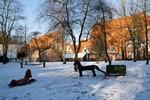 Sanierung des Klostergartens