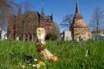 Ostern 2012 in Rostock und Warnemünde