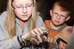 Vogel des Jahres 2012: Der Rostocker Dohlennachwuchs