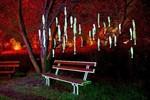 Magie und Musik laden zur LichtKlangNacht 2012 ein