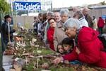 34. Landes-Pilzausstellung 2012 im Botanischen Garten