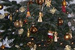 Weihnachtsbaum-Entsorgung vom 7. Januar bis 1. Februar 2013