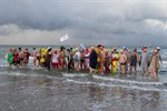 Abbaden der Rostocker Seehunde