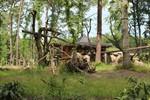 Freigehege für die Menschenaffen im Zoo Rostock hergerichtet
