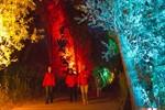 Lichtklangnacht 2013 - Meerjungfrauen im IGA-Park