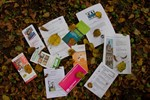 Literarischer Herbst 2013 in Rostock