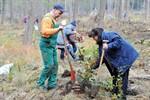 Hundeauslaufzone und 3.Baumpflanzaktion in der Rostocker Heide