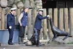 Marine verlängert Patenschaft mit Seebären im Rostocker Zoo