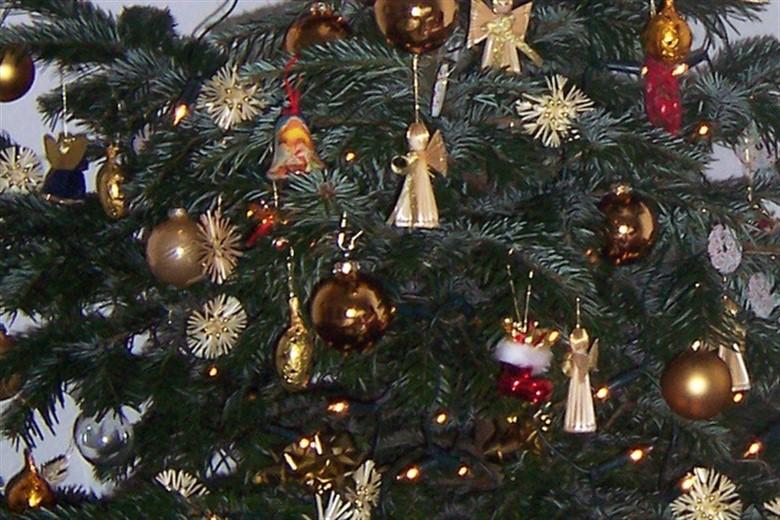 Weihnachtsbaum bis 6 januar
