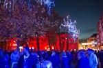 Uni-Platz leuchtet bunt in der 13. Rostocker Lichtwoche