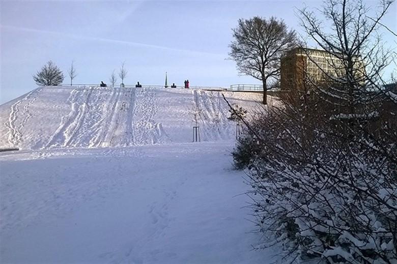 Der erste Schnee des Winters 2014/2015 in Rostock - hier am Kanonsberg