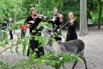 Klassiknacht 2015 im Zoo Rostock
