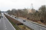 Durchforstung an der Stadtautobahn in Evershagen