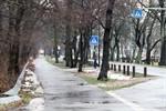 Radweg an der Warnemünder Parkstraße beschäftigt die Planer