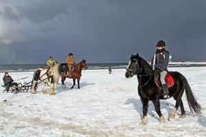 Winterreiten, Schlitten- und Kutschfahrten am Strand beim Warnemünder Wintervergnügen