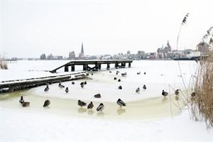 Noch halten sich Schnee und Eis in Rostock in Grenzen - die Stadt erinnert an die Räum- und Streupflicht (Foto: Archiv)
