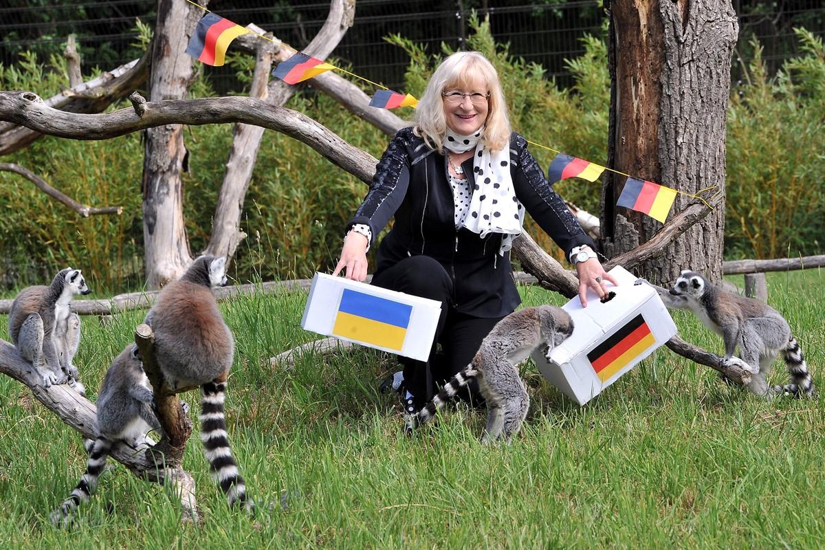 rostocker zoo orakel deutschland gewinnt 4 1 gegen die ukraine rostock heute. Black Bedroom Furniture Sets. Home Design Ideas