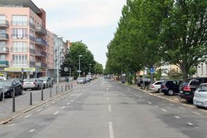 Die restliche Ulmenstraße wird in drei weiteren Bauabschnitten erneuert