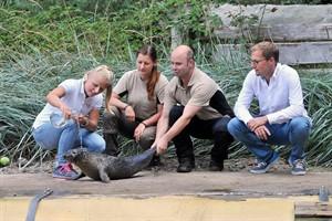 Seehund-Taufe im Zoo Rostock (Foto: Joachim Kloock)