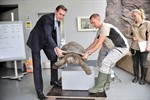 Galapagos-Riesenschildkröten im Rostocker Zoo gewogen