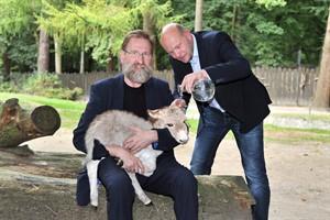 Taufpate Jens Fischer (re.), Center Manger des Ostsee Parks, war schwer begeistert von Pippo und freute sich mit Zoodirektor Udo Nagel, dass sich der Kleine so gut entwickelt. (Foto: Joachim Kloock)