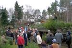 Weihnachtsbaumverkauf des Stadtforstamtes startet am Donnerstag