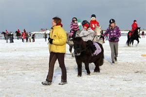 Ponyreiten am winterlichen Strand von Warnemünde