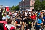 25. Rostocker Citylauf bricht Rekorde