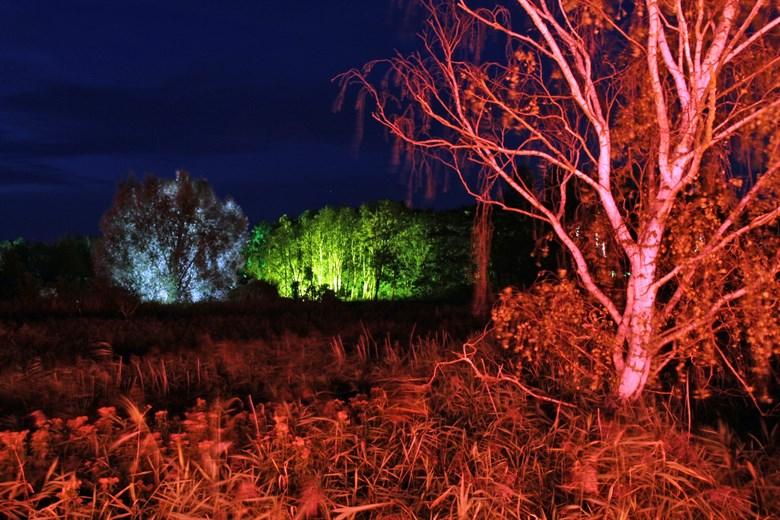 Lichtklangnacht 2017 im IGA Park