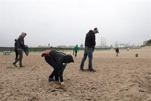 Trotz Regenwetter sammelten Surfer und Umweltfreunde zur Hanse Sail Plastikmüll vom Strand zwischen Westmole und Hotel Neptun