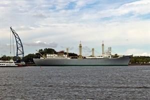Bürgerentscheid: Soll das Tradi in den Stadthafen verlegt werden?