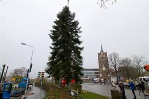 Der Weihnachtsbaum für den Rostocker Weihnachtsmarkt 2017 wird aufgestellt.