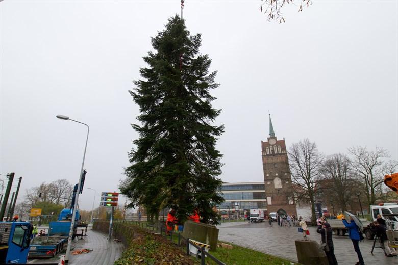 Wer Schmückt Den Weihnachtsbaum.Weihnachtsbaum Vor Dem Kröpeliner Tor Angekommen Rostock Heute